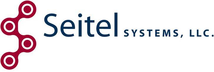 Seitel Systems - IT Support Services - Seattle / Tacoma